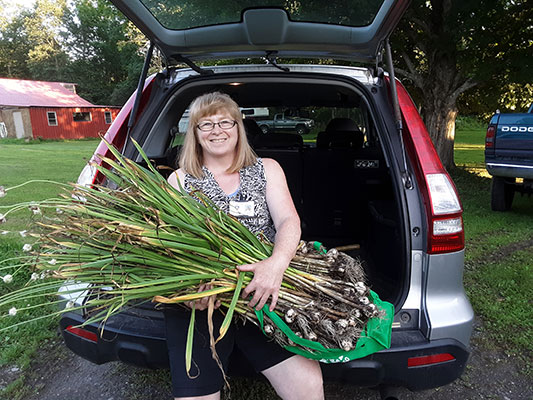 Wendy Carroll holding an armload of garlic