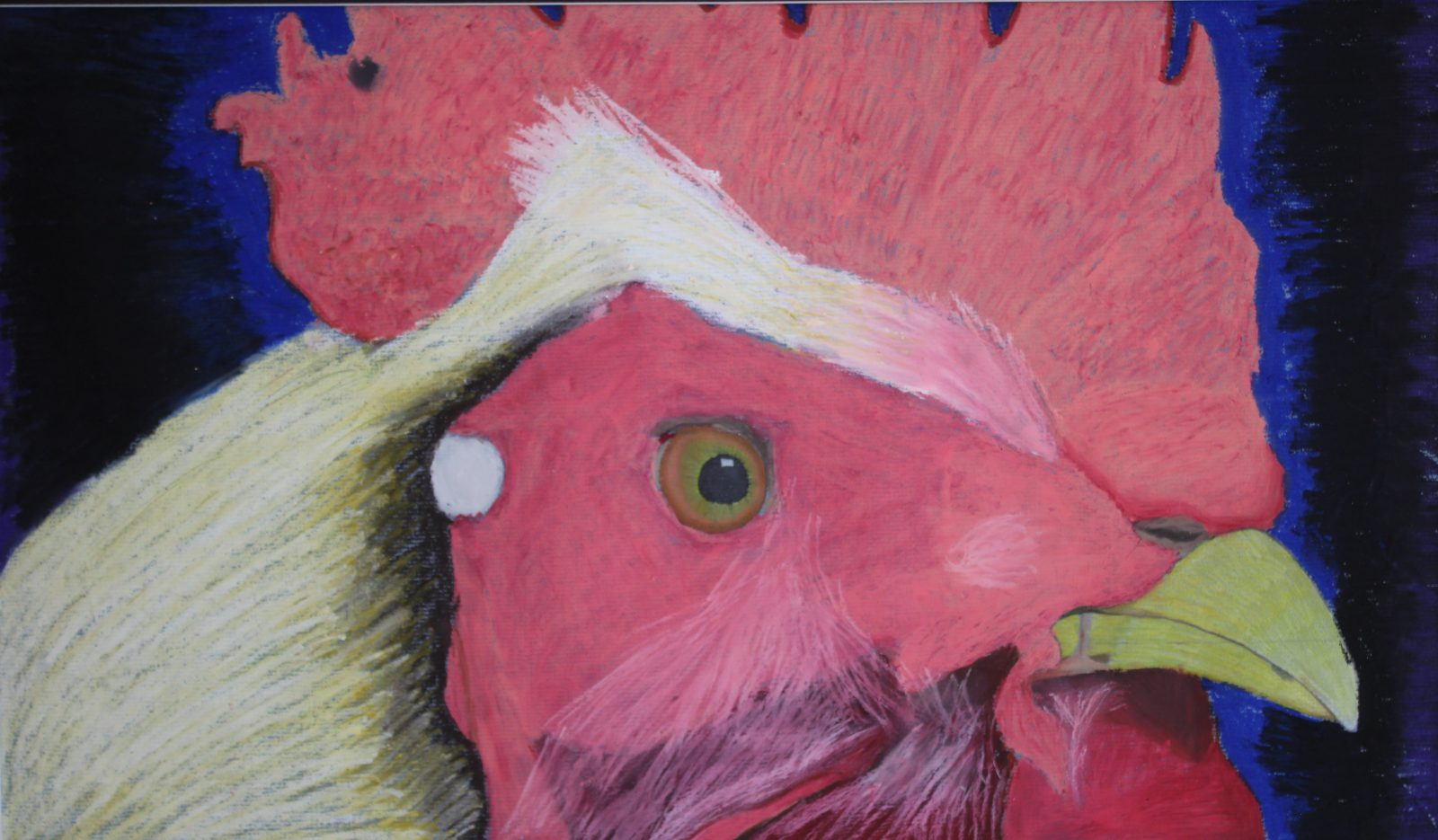 a hand drawn portrait of a rooster