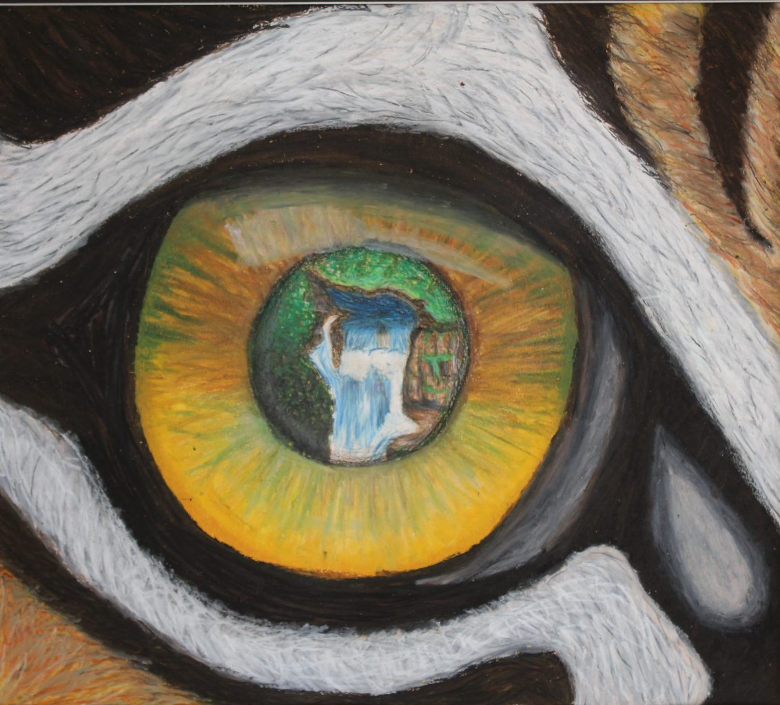 a waterfall is shown reflecting in the eyeball of a tiger