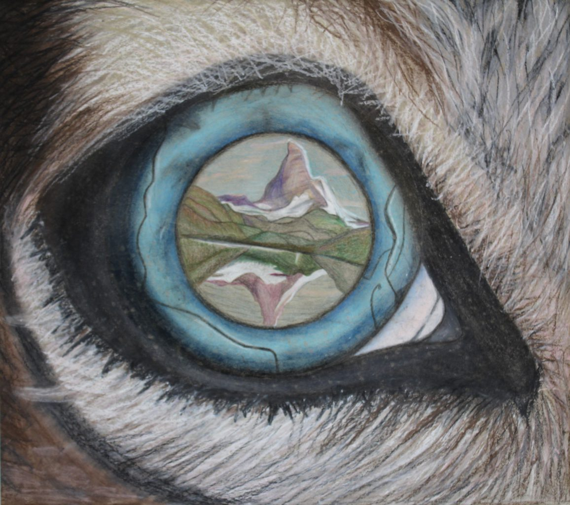 a hand drawn portrait shows a mountain reflecting in an eyeball